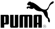 puma_designengine_job